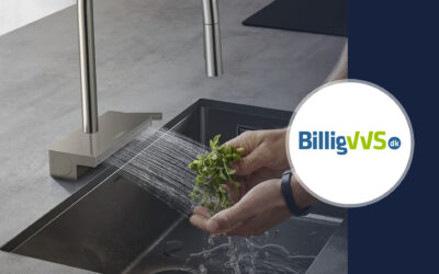 BilligVVS choose Algolia + Raptor to power their new e-commerce search solution